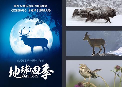英语四季图片素材